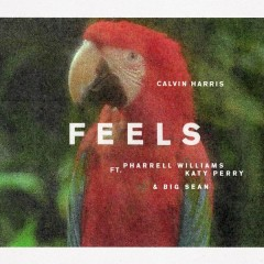 Feels - Calvin Harris,Pharrell Williams,Katy Perry,Big Sean