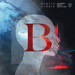 Breach (Walk Alone) (Single) - Martin Garrix, Blinders