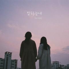 In The Night Sky (Single)