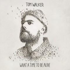 Not Giving In - Tom Walker