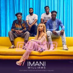 Dumb (Single) - Imani Williams