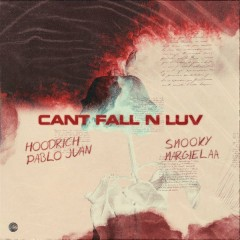 Can't Fall N Luv (Single)