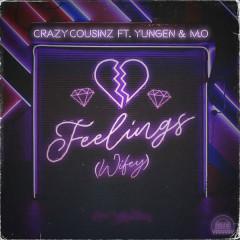 Feelings (Wifey)