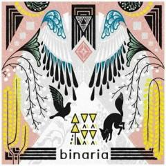 tsuduri - Binaria