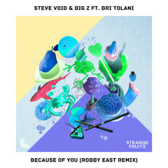 Because Of You (Robby East Remix) - Steve Void, Big Z