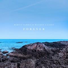 Forever - Martin Garrix,Matisse & Sadko