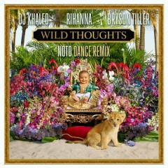 Wild Thoughts (NOTD Dance Remix) - DJ Khaled,Rihanna,Bryson Tiller