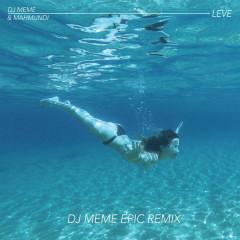 Leve (DJ Meme Epic Remix)
