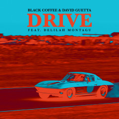 Drive - Black Coffee,David Guetta,Delilah Montagu
