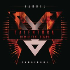 Calentura (Remix) - Yandel,Tempo