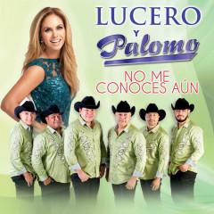 No Me Conoces Áun (Single)