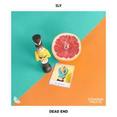 Dead End (Single) - Ily