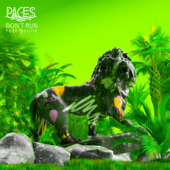 Don't Run (Single) - Paces