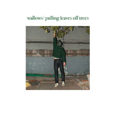 Pulling Leaves Off Trees (Single)
