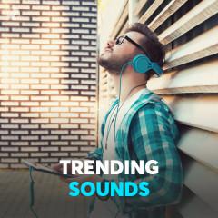 Trending Sounds - Various Artists