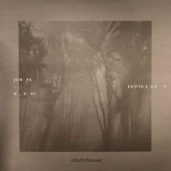 Triptology - Jonas Kopp
