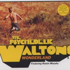 Wonderland (UK Single) - Roisin Murphy