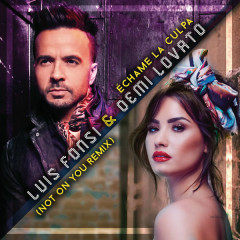 Échame La Culpa (Not On You Remix) - Luis Fonsi, Demi Lovato