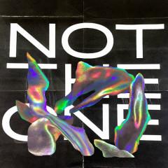 Not The One (Single) - Mikky Ekko