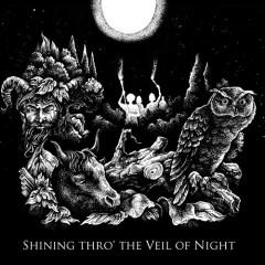 Shining Thro' The Veil Of Night
