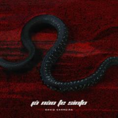 Já Não Te Sinto (Single) - David Carreira