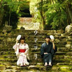 Kagerou Matsuri - KiWi