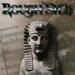 Symphony Of Life - Rough Silk