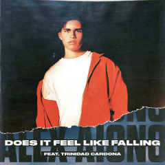 Does It Feel Like Falling (Single)