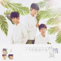小精灵 / Tiểu Tinh Linh - TFBoys