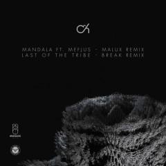 Last Of The Tribe (Break Remix) - Camo & Krooked