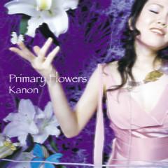 Primary Flowers - Kanon