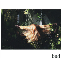 Bud (Single) - Fenne Lily