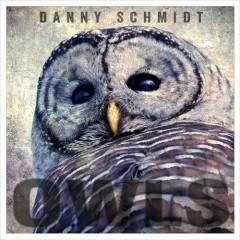 Owls - Danny Schmidt