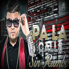 Pa' La Calle Sin Rumbo (Single)