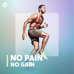No Pain No Gain - Various Artists