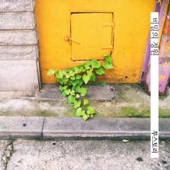 Secret Garden (Single)
