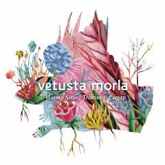 Mismo Sitio, Distinto Lugar - Vetusta Morla