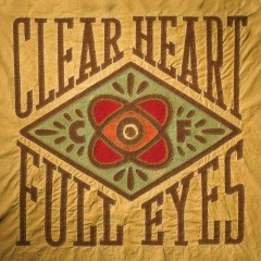 Clear Heart Full Eyes - Craig Finn
