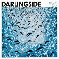 Birds Say - Darlingside