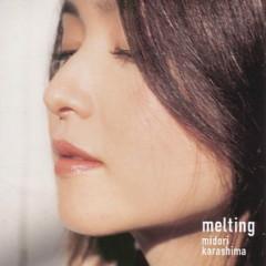 melting   - Midori Karashima