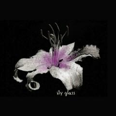 Lily Glass - Lily Glass