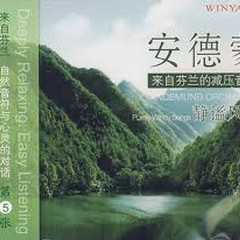 Purely Windy Songs (静谧风吟)  - Andemund Orchestra