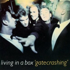 Gatecrashing - Living In A Box