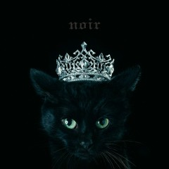 BEST SELECTION 'noir' - Aimer