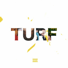 Turf (Single) - Amine