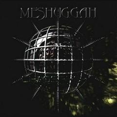 Selfcaged - Meshuggah