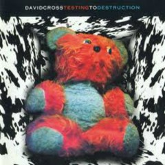 Testing To Destruction - David Cross