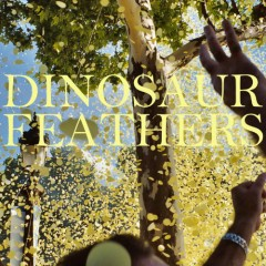 Whistle Tips - Dinosaur Feathers