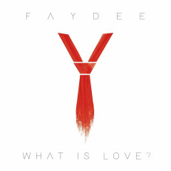 What Is Love? (Single) - Faydee