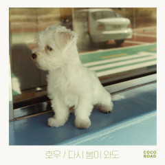 Again, Spring Comes (Single) - HoWoo